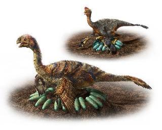 大型恐竜も「抱卵」か