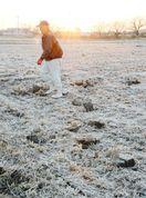 「小雪」初霜を観測、寒さ一段と
