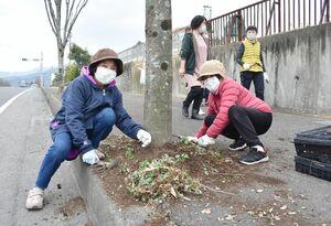 パンジーの苗を植える老人クラブの人たち=伊万里市東山代町