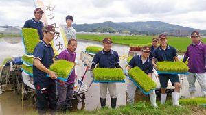 ホシユタカの苗を植えるJA伊万里二里青年部のメンバー。GAPの認証取得に向けた取り組みにも本腰を入れている=伊万里市
