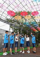 色とりどりのビニール傘を飾り付けた佐賀商の生徒たち=佐賀市唐人