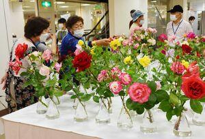 約600輪のバラが並ぶ会場=佐賀市中の小路の佐賀玉屋