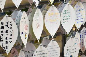 佐賀県の県木クスノキの葉を模した気仙沼市へのメッセージカード=佐賀市のゆめタウン佐賀