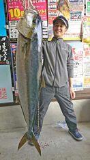 134.5センチ ヒラマサ 武雄市の福山さん 長崎・平戸…