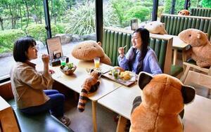 テーブルの座席にぬいぐるみを置き、客同士の距離を取った伊豆シャボテン動物公園内のレストラン=5月、静岡県伊東市(同園提供)