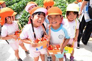 たくさんのイチゴを摘んで笑顔を見せる園児たち=唐津市柏崎