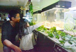 水槽の中を泳ぐ魚を指さす親子連れ=佐賀市のゆっつら~と館