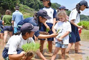 田植えで交流する嬉野町の生徒と「ガールスカウト」の子どもたち=嬉野町の田んぼ