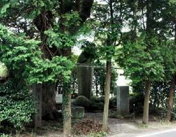 道祖神が奥に鎮座する「太閤道一里塚」=唐津市佐志