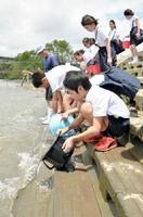 筑後川にエツの稚魚を放流する子どもたち=久留米市城島町の下田大橋そば