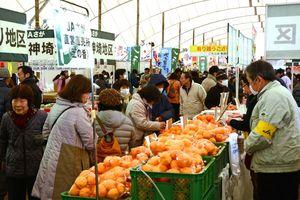 テント内は、ミカンなど新鮮な農産物を買い求める客でにぎわった=佐賀市川副町の佐賀空港東側特設会場