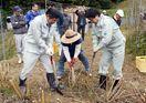 キクイモ収穫祭 「エミュー」の恵み、放牧の圃場で栽培