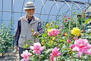 自宅の庭で約200株のバラを育てている中野貞禎さん=佐賀市与賀町