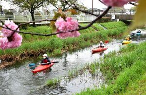 カヌーで多布施川を下り、佐賀の自然を楽しむ参加者=佐賀市鍋島町