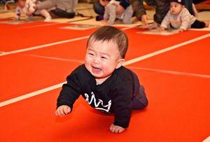 ゴールで待つ母親の元へ泣きながら向かおうとする赤ちゃん=佐賀市の佐賀城本丸歴史館
