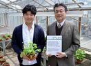 植物ウイルスの拡散経路を解明 佐賀大学・大島教授の研究グ…
