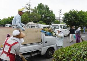 集めた枯れ葉や草をトラックに運び込む人材センターの人たち=鹿島市の北公園