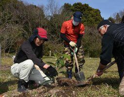 ビワの苗木を植える参加者=佐賀市金立町の徐福長寿館薬用植物園