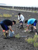 干潟の生物を採取する高校生=佐賀市の東与賀海岸シチメンソウヤード