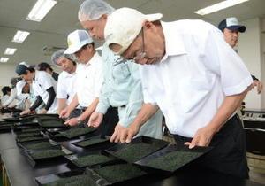 出品された茶の形状や色をチェックする審査員=嬉野市の県茶業試験場