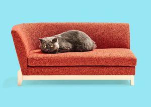 平田椅子製作所が手掛けたネコ家具