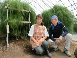 アスパラガスの「ゆっこ農園」を営む御厨さん夫妻