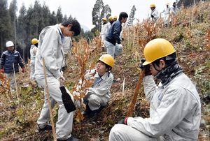 離山式を前にクヌギの苗250本を植林する伊万里農林高森林工学科の3年生=伊万里市の腰岳