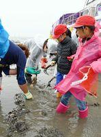 保護者に貝の種類を教えてもらいながら、潮干狩りに挑戦=有明海