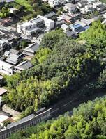 女性の遺体が見つかった奈良市の雑木林=25日午後(共同通信社ヘリから)