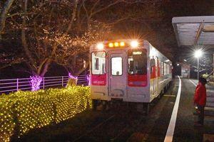 「桜の駅まつり」10回目を記念して桜の根元にイルミネーションを施している=伊万里市山代町のMR浦ノ崎駅