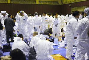 殺処分に向かうため防護服を身に着ける職員ら=2月4日、杵島郡江北町のB&G海洋センター