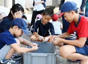 仕上げに紙やすりで勾玉を磨く児童=佐賀市の県立博物館・美術館