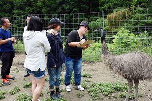 エミューを間近で観察しながらスケッチするピクファ利用者=基山町のエミュー飼育場