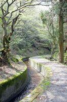 成富兵庫茂安が手掛けた「蛤水道」。現在はコンクリートで整備されている=吉野ヶ里町(提供写真)