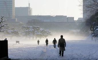 首都圏の大雪、320人けが