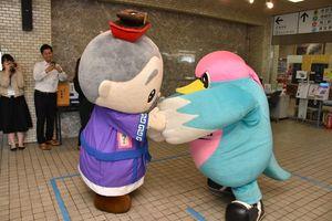 サガン鳥栖のPRで多久市役所を訪れ、市の観光キャラ・多久翁さんと相撲を取るウィントス=多久市役所