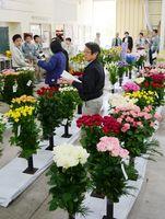 県内の生産者が出品した切り花をチェックする審査員=唐津市の唐津花市場