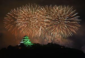夜空を焦がす花火とライトアップされた唐津城が競演=15日夜、唐津市の舞鶴橋から撮影