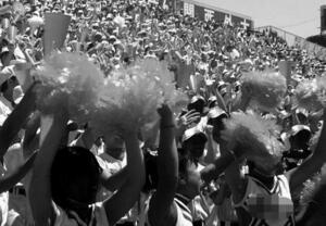 高校野球大会で応援するチアリーダーのイメージ(一部を画像加工しています)