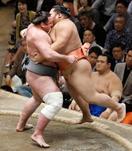 関脇栃ノ心、10連勝で首位守る