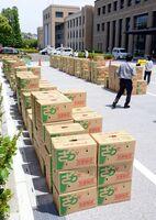 県職員が購入した県産タマネギの段ボール箱=県庁