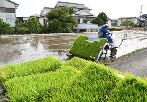 曇り空が広がっているものの、雨の気配はなく、汗ばむ陽気の下、田植えに精を出す農家=佐賀市東与賀町
