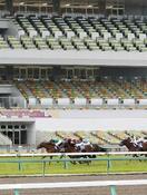 中央競馬、6月も無観客で開催