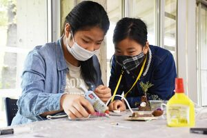 木の実などを使った工作を楽しむ姉妹=佐賀市富士町の県北山少年自然の家