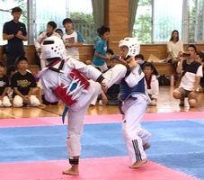 第31回WTF県テコンドー選手権大会の熱戦