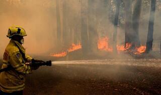 豪、森林火災拡大に懸念