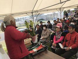 シンビジウムの栽培法について学ぶ参加者
