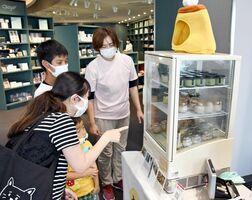 お披露目会で販売されたプリンを選ぶ家族連れ=佐賀市の佐賀空港2階イベントスペース