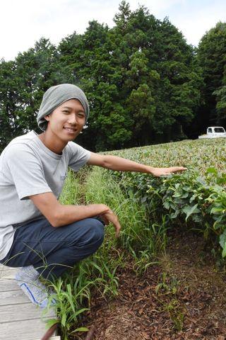 <熱中若人>嬉野茶農家 松田二郎さん