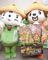 九年庵への来場を呼び掛ける神埼市のゆるキャラ「くねんワン」(右)と「くねんニャン」=神埼市役所